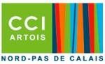 logo-cci2011_20579